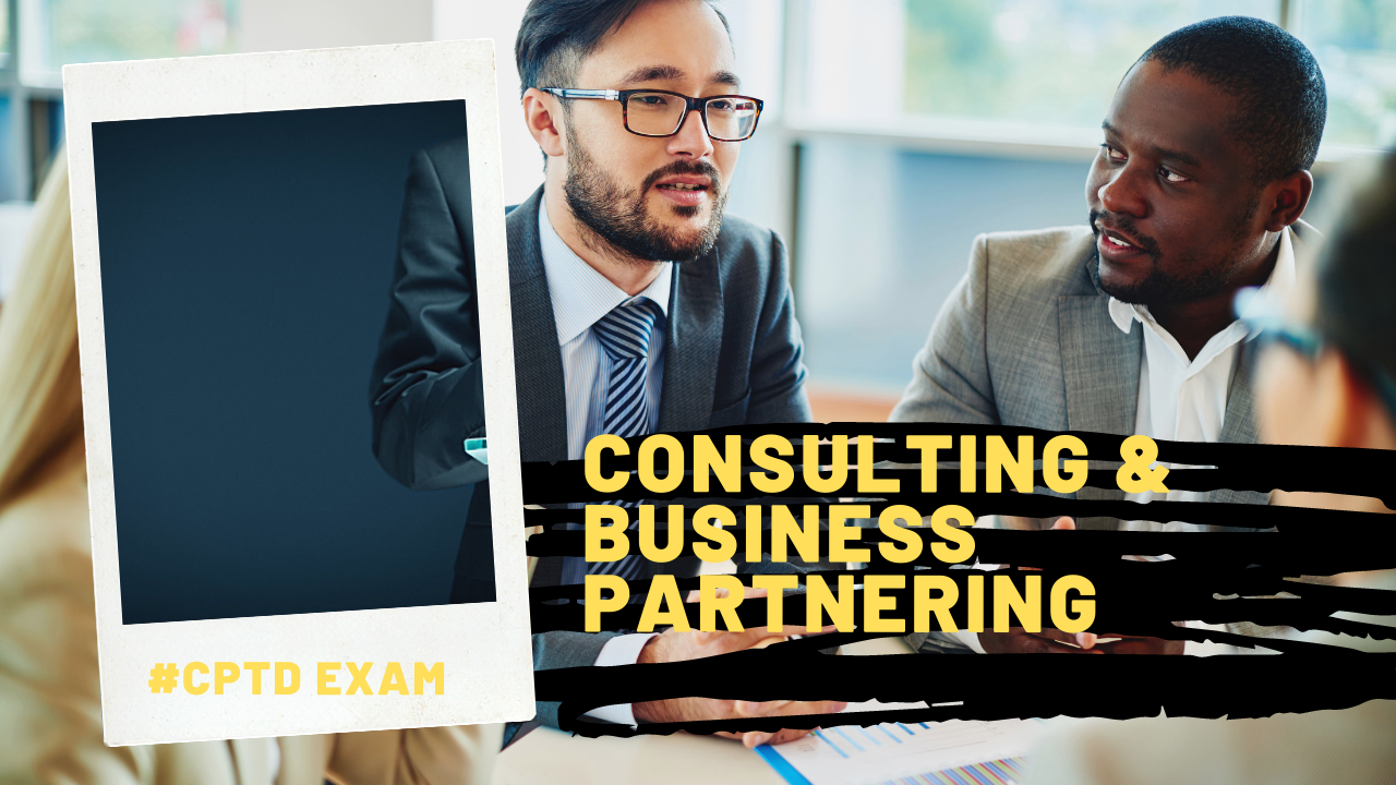 Consulting & Business Partnering
