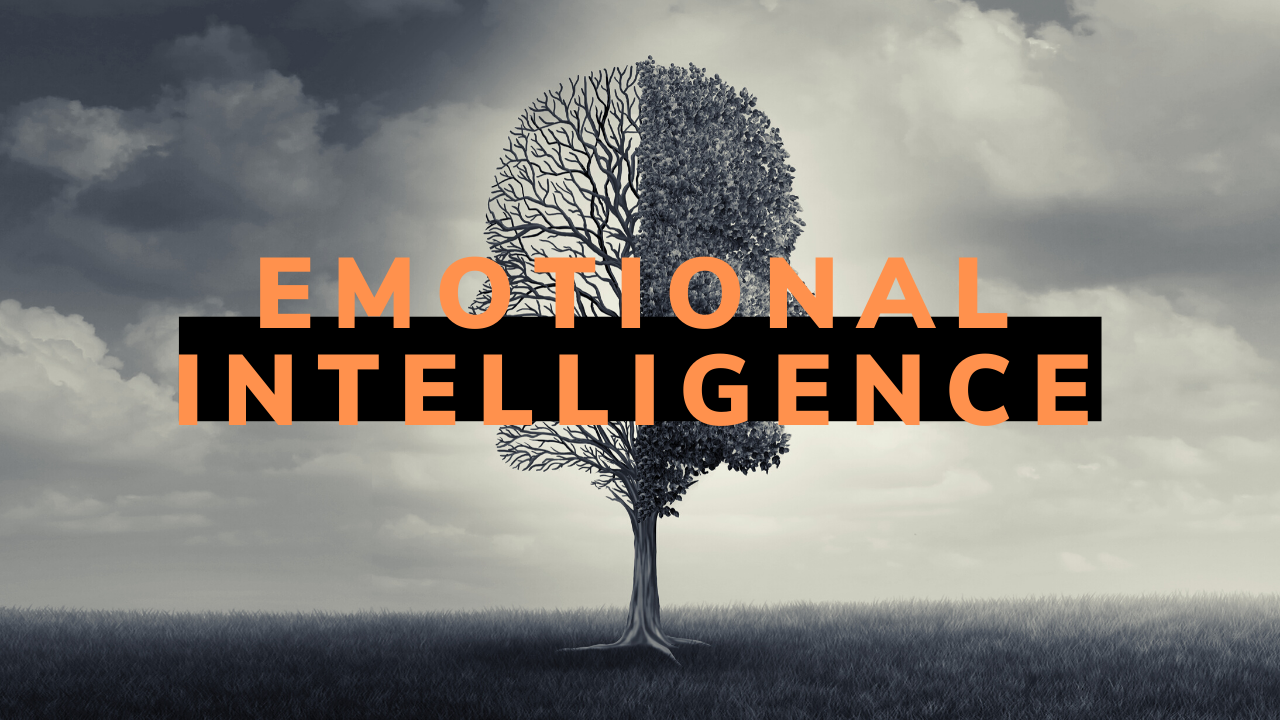 Decorative picture that reads emotional intelligence